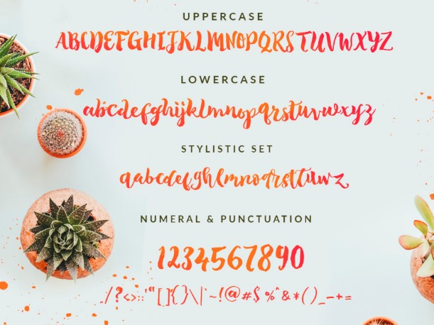The Tropical Font View